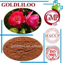 Free Sample GMP & HACCP &ISI9001 100% Natural Organic Rosa Canina extract - Vitamin C 5% 10% 12%