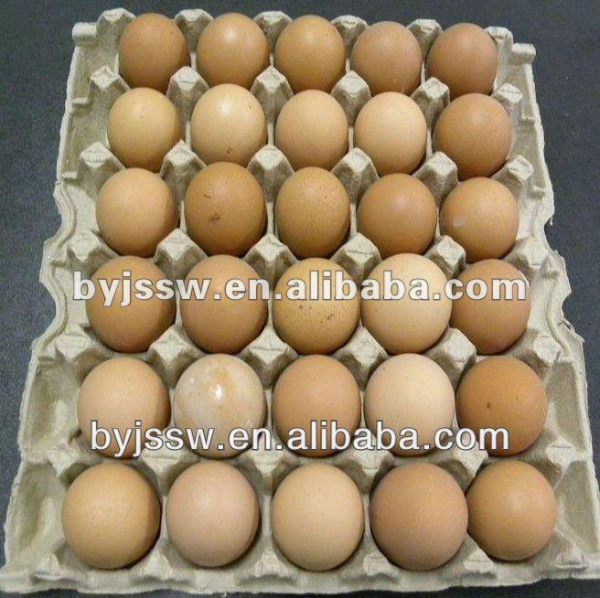 30 números de pasta de papel da bandeja do ovo