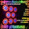 Iris platinum high lumen 300w led grow light, grow led lamp, led grow light bulb