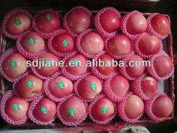 high quality fuji apple