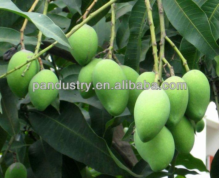 98%TC mango fertilizer/DA-6 Diethyl Amimoethyl Hexanote