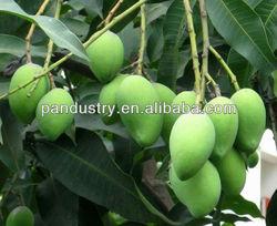 98%TC mango fertilizer/DA-6