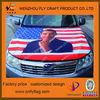 2013 Customized Car Hood Cover/Engine hood cover