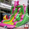 2013 Popular Inflatable Funny Slide