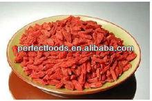 dried goji berries/goji/wolfberry/import goji berries/organic goji berries