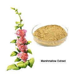 Marshmallow Raw Materials Extract