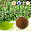 Black Cohosh P.E triterpene glycosides 2.5%