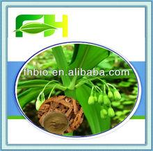 100% Natural Polygonatum Odoratum P.E.