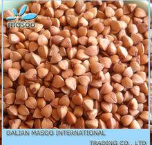 masoo food 2012 - roasted buckwheat kernel