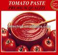 Salça sıcak satış konserve, domates ketçap, domates sosu