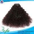 Materia prima sin procesar natural de la virgen afro rizado del pelo humano