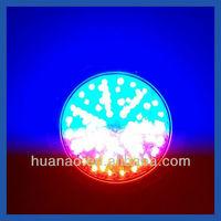 LED Pool Light with wall mounted led light/Niche led light
