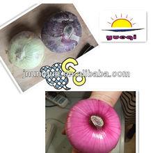 china crop 2013 fresh red yellow onion