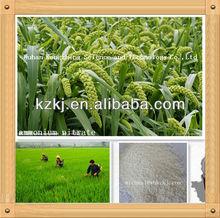 High Quality ammonium nitrate fertilizer