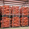 20kg oignon frais