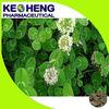 Red clover extract/Trifolium pratense(8% Isoflavone)