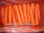 carrot,fresh carrot, carrot cake with good quality from china