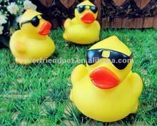 Shenzhen Squeaky duck water