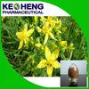 Chinese herb St Johns Wort Extract/Hypericum perforatum L