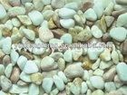 tumbled pebble stone