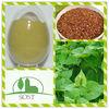 100Percent Tartary Buckwheat Extracts New Product On China Market