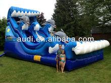 Dolphin Bay Splash Inflatable Water slide
