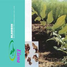 NATURAL King Solomonseal Rhizome Extract