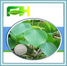 100% Natural Herbal Antineoplastic Stephania Tetrandra Extract