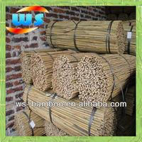 Bamboo cane / poles /sticks /stakes