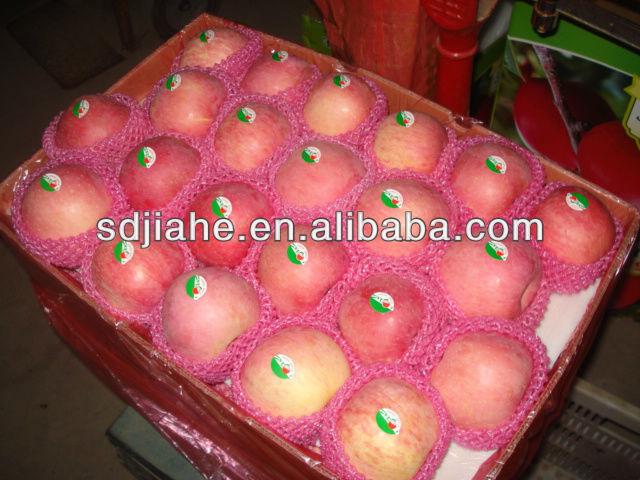 2013 high quality fuji apple for sale