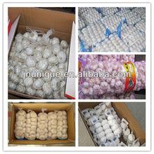 2013 new season garlic supplier of jining city