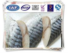 Tiefkühlkost( gefrorene makrelen Teil)
