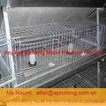 Ruilong société anping fournisseur. cage pour animaux