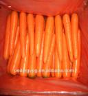 80-150g S fresh carrot China