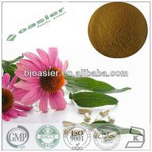 Natural GM P hot sale echinacea purpurea extract/cichoric acid