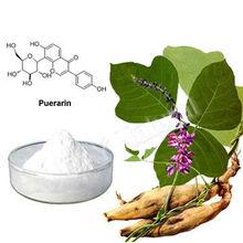 Herb and medicine Radix puerariae lobatae