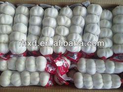 2013 fresh garlic price in china