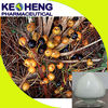 plant extract saw palmetto fruit extract/saw palmetto extract 25%