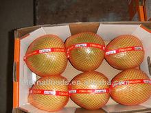 China Fresh Honey Pomelo for sales