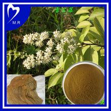 98% Celastrol from Tripterygium wilfordii
