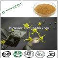 gmp natural caliente venta icariina de hoja de epimedium extracto en polvo
