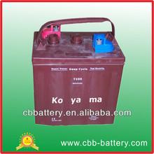 6VAGM Deep Cycle Battery -T105-6V225AH-for golf cart