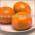 New Year 2015 Special Offer - Kinnow Citrus / Mandarin / Navel Valencia Orange / Tangerines