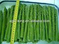espárrago verde congelado