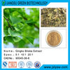Flavones/Ginkgo extract/Ginkgo biloba leaf extract