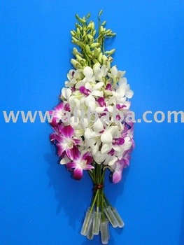 Water Tubes For Flowers Orchids, Roses Etc.