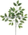 Foglie di seta, foglie di albero ingrosso