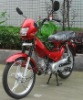 50cc Moped, Scooter (48Q-2) Luxury Model