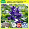 Pure 10 1 Sclareol sage extract extracto+de+vegetacion