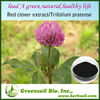 2014 High Quality Natural Red Clover Extract